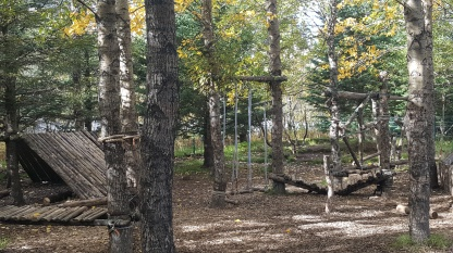 forest swings
